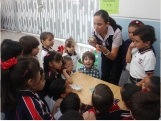 Exposición de Experimentos en Preescolar