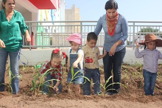 Huerto Ecologico en IBJP