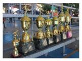Campeones Copa Activa