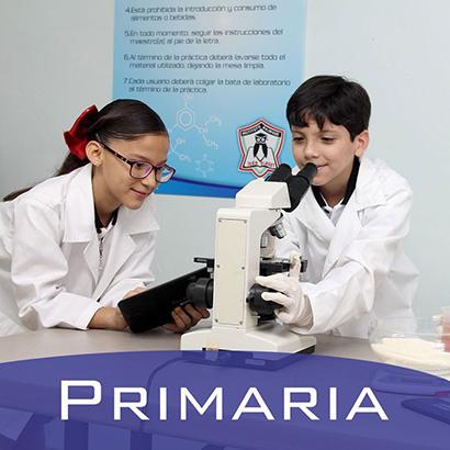 primaria-rgb-2